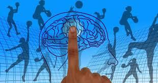 obésité vieillit cerveau