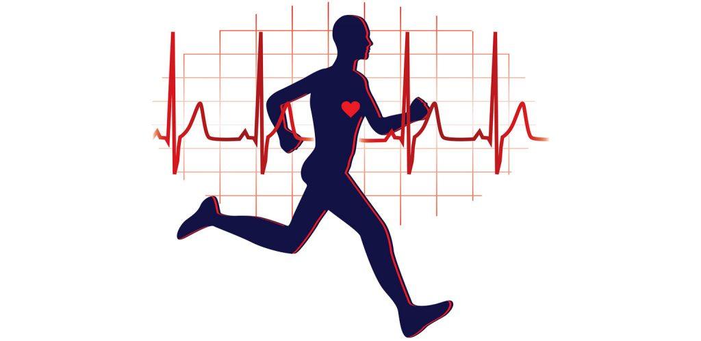 bénéfiques cardio training